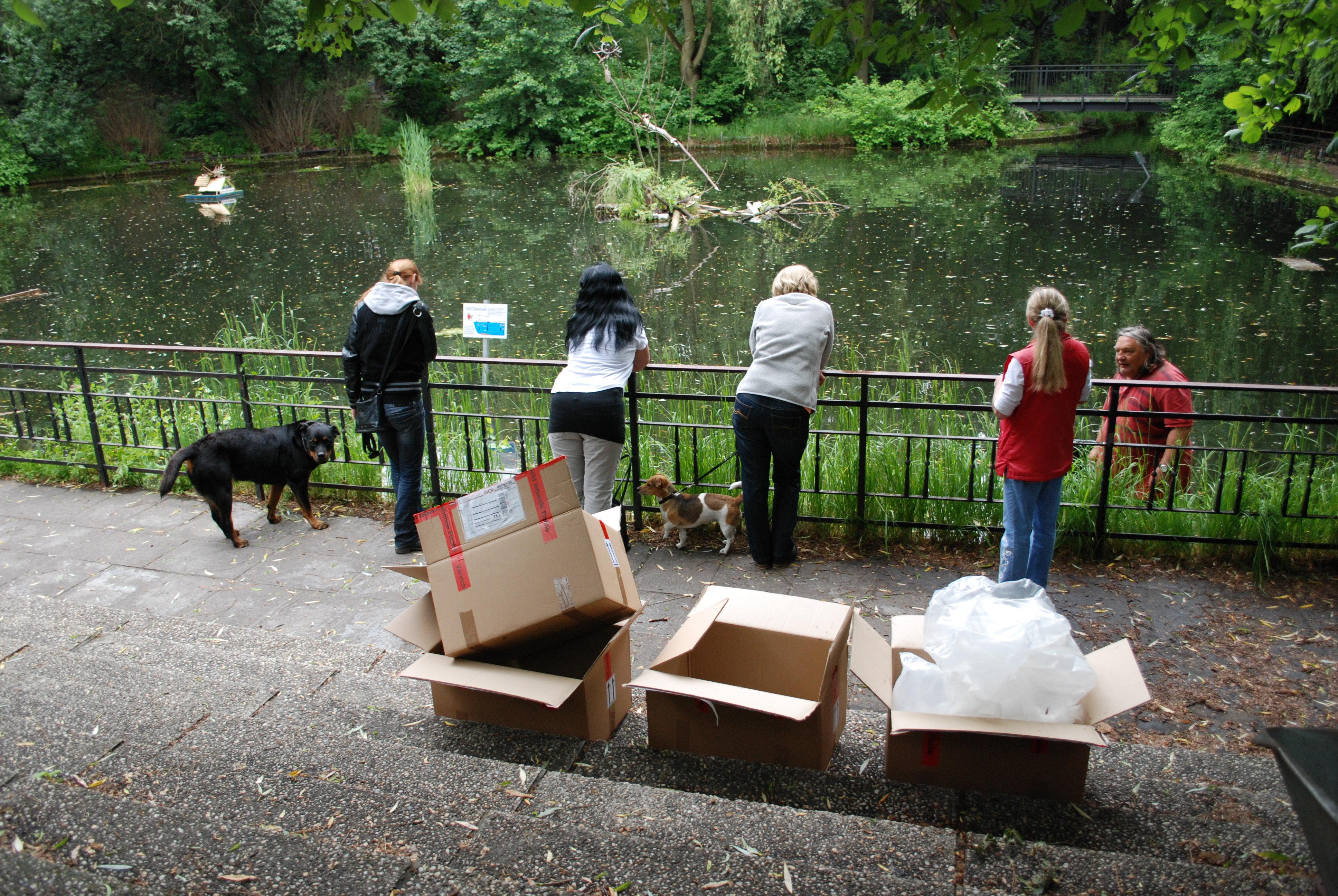 Juni 2013 anwohner initiative ernst th lmann park for Fische im teich